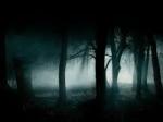 Das Geheimnis der Familie Everford: Manche Behaupten sie seien Fabelwese, doch die anderen hingegend glauben sie hätten übernatürliche Kräfte die