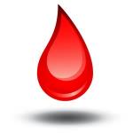 Welchen Blutstatus hast du?