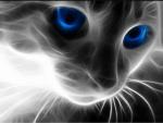 Wer von meinen erfundenen Katzen bist du?
