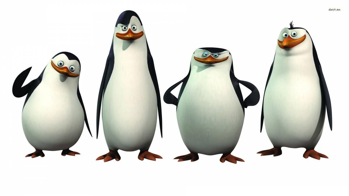 pinguine aus madagaskar