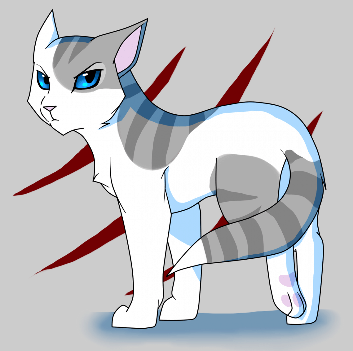 Warrior Cats Whitewing