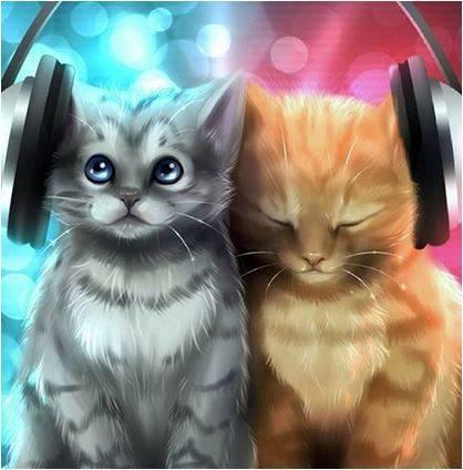 Warrior Cats Gesetz Der Krieger
