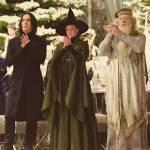 Was denken die Hogwarts Lehrer über dich?