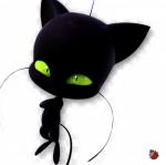 ((bold))((big))Plegg((ebig)) Der Sarkastische Tier: Katze Hüter|in: Adrien Agreste Verwandlung: Cat Noir Miraculous: Ring Kraft: Katerclismus Charakt