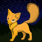 Warrior Cats- Der Salamander Clan