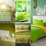 ((green))Erde((eolive))-((olive))Erde((ered)) Bett 1: Bett 2: Bett 3: Bett 4: Bett 5: