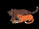 Ein Grund, warum Eichhornschweif Brombeerkralle nicht erzählte, dass Häherfeder, Distelblatt und Löwenglut nicht seine Jungen sind, war, dass sie w