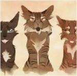 Tigerstern, Bernsteinpelz und Brombeerkralle sollen alle einen australischen Akzent haben.