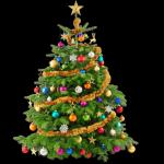 Die Tradition des Weihnachtsbaums kommt aus Deutschland.