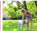 Bibi hat einen Hund