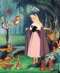 Dornrösschen: Wie alt war Aurora, als sie erfuhr, dass sie eine Prinzessin ist?
