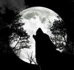 Räume: Wolf Moon: Rose Blood: Silvana, Rose, Zuki, Raven (voll) Nightmare: Leon Scary Moments: