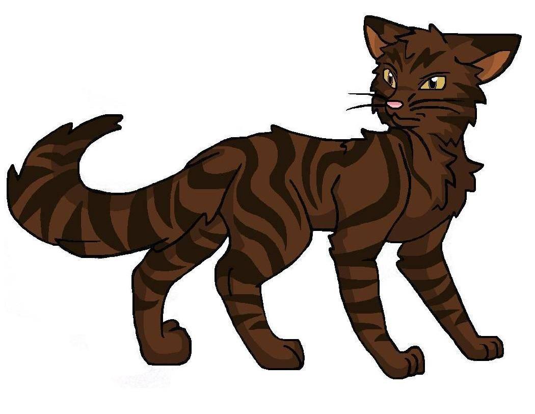 Borkenpelz Warrior Cats