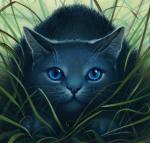 Wie gut kennst du Warrior Cats?