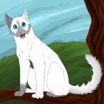 Das ist Moosjunges. Ich weiss es ist kein Junges aber es gibt nur diese Form von einer Katze. Gewünscht von FlowerGirl04