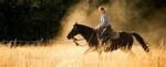 Herzlich Willkommen, hier ist die erste Frage: Hast du schon Erfahrung mit Pferden?