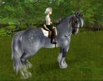 Das größte Pferd ist das Shire Horse.