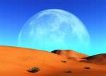 Du siehst ein riesiges Tal, versteckt in der Wüste. In der Mitte ist ein Felsen auf den Felsen stehen 3 Katzen. Unter den Felsen sind viele Katzen. &