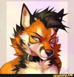 Name: Mac Alter:23 Art: Fuchs Geschlecht: M Charakter: seht ihr Aussehen: Bild Gruppe: Keiner Rang: Stärken: Sich nicht einzuordnen, Einfach akzeptie