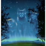 ((big))Prophezeiung ((ebig)) Die dunkle Bedrohung naht und nichts kann sie aufhalten! Der Himmel schickt ein leuchten zu den Katzen, bringt ihnen neue
