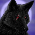 ((bold))Gespielt von: Marius 12((ebold)) Name: Marius Schattenkralle Rufname: Shadow Alter: 4 Geschlecht: M Aussehen: Ein Schwarzer Wolf dem das recht
