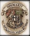 Welcher Harry Potter Boy gehört dir?