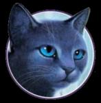 Name: Mondstern Geschlecht: w Alter: 28 Monde Gruppe: Clan Clan: DonnerClan Rang: Anführerin? Aussehen: sehr große, schlanke, attraktive graublaue K