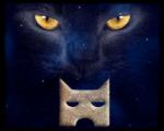 ((olive)) Gefahren- Glanzpelz(GS) erzählt: Mein erstes zusammentreffen hatte ich mit 11 Jahren: Ich war eine Katze eine mit Gelben Augen und schwarze