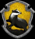 In welches Haus von Harry Potter gehöre ich?