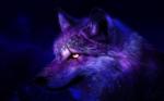 Name: Diable Alter: 1 Jahr Art: Wolf Geschlecht: weiblich Aussehen: Violett, rosa, Blau mit Flecken die aussehen wie Sterne, insgesamt sieht das Fell