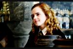 """Sagte Hermine zu Ron in Teil 5 """"Nur weil du eine Gefühlswelt eines Teelöffels hast, geht es nicht uns allen so!"""""""
