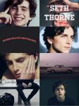 Seth Thorne