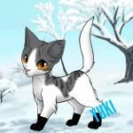 Die hübsche Katze YUKI!