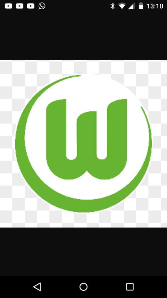 Vereine Wolfsburg
