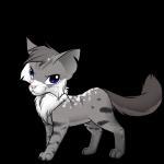 Silver- Silbern getigerter Kater mit zerfetzten Ohren Farn- Hellbraun getigerte Kätzin mit eisblauen Augen und weißem Bauch, Pfoten und Brust Mairie