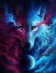 Die Rudel der Wölfe