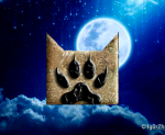 ((bold))Das MondRudel ((ebold)) ((unli))Alpha: ((eunli)) Name: Janina (wir aber Jana gennant und naja ihr solltet es nicht wagen sie Jani zu nennen) A