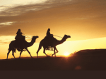 ((bold))((maroon))Berufungen ((emaroon))((ebold)) ((olive))((cur))Der Adel((ecur))((eolive)) Sultan ~ Ibrahim Nhuri Daman Frau/en des Sultan ~ Tariqat