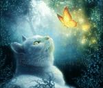 Bei den Frost-Clan Katzen ist das so... Diese Katzen sind etwas eingebildet und fressen meistens nur Hasen. Sie jagen fast nie bei Regen, außer es is