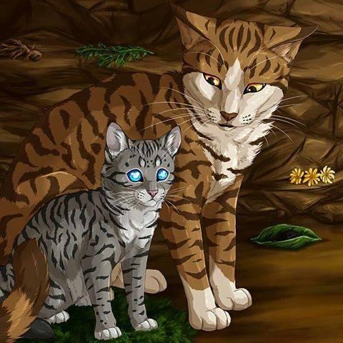 Warrior Cats Feuerstern Und Sandsturm Fanfiction
