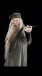 Wie heißt Professor Dumbledore mit ganzen Namen?