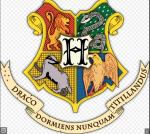 Hogwarts, zu welchem Haus gehörst du?