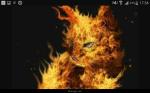 Tüpfelblatt wäre nie mit Feuerstern zusammengekommen (auch wenn sie nicht getötet worden wäre)