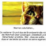 Warrior Cats Fakten