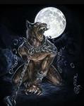 Etwas wissen über Werwölfe Vor langer Zeit wurden die Werwölfe fast ausgerottet. Doch manche konnten fliehen. Um den Werwolf bestand zu erhalten tr