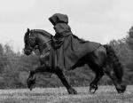 ((big))Die schwarze Reiterin((ebig)) Seitdem sie aufgetaucht ist, gehen die Ereignisse in Mittelerde drunter und drüber. Es heisst, wenn sie erschein