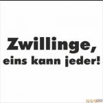 Ninjago: Zwillingschaos