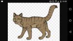 Meine top 15 Charaktere aus Warrior Cats (1/1)