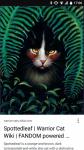 Warrior Cats: Heiler