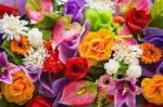 Was ist für dich das Beste an Blumen?